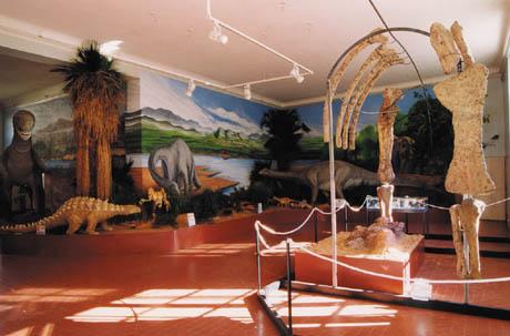 自然历史博物馆.jpg